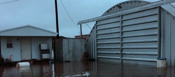 Harvey Drowns Hope as Disaster Strikes Family Farm