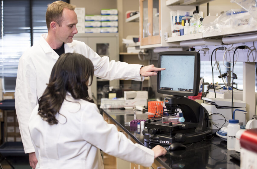 Video+Story: TTUHSC El Paso Research Leads to New Anti-Cancer Drug in Europe