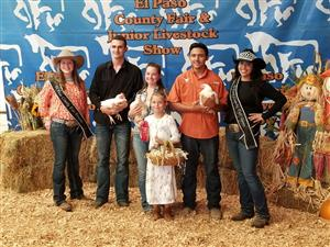 Coronado FFA Students Take Top Prizes at State Fair