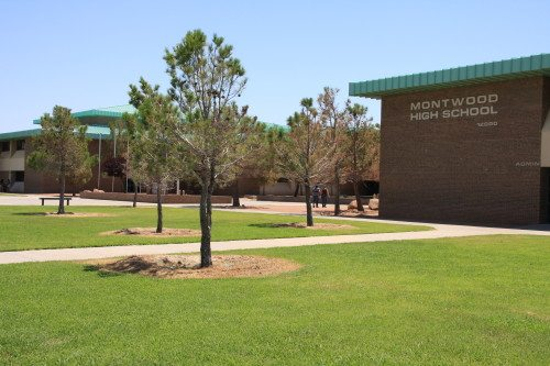 Montwood Students Plan Sciencepalooza for Younger Students Saturday