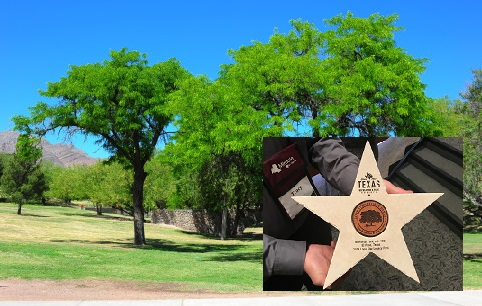 Parks and Recreation Department Park Receives Lone Star Legacy Award