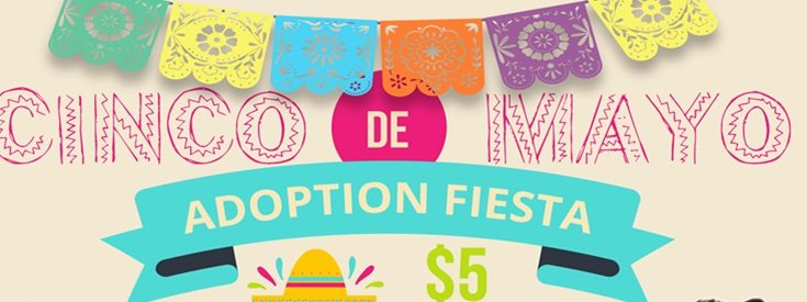 Animal Services hosts Cinco de Mayo Adoption Fiesta, Adoptions Reduced to $5