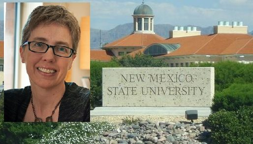 New NMSU School of Nursing Director Combines Engineering, Nursing Background to Educate Students