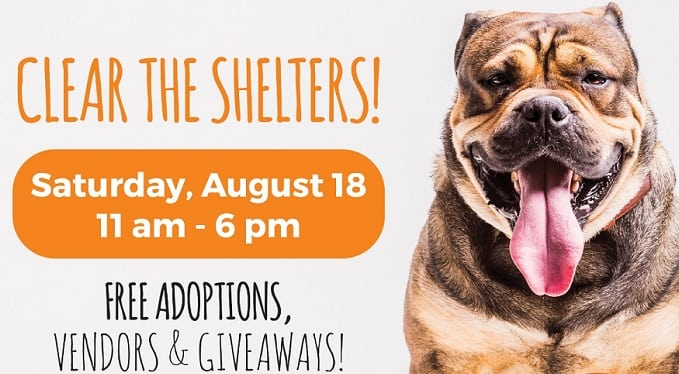 """Animal Services Hosts """"Clear the Shelters"""" Event This Saturday"""