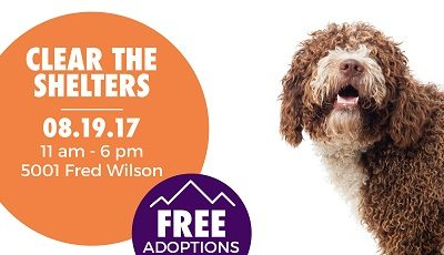 "Animal Services Offering Free Adoptions via ""Clear the Shelters"" Event Saturday"