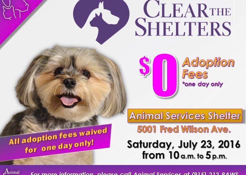 "Animal Services Aims to save Hundreds of Lives with""Clear the Shelters"" Event Saturday"