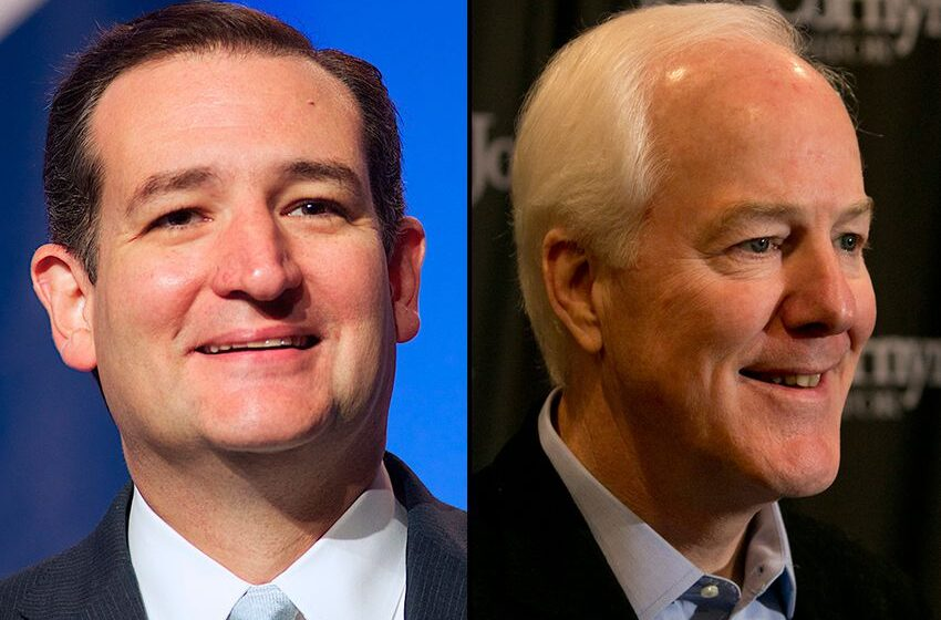 Ted Cruz Endorses John Cornyn for Re-election