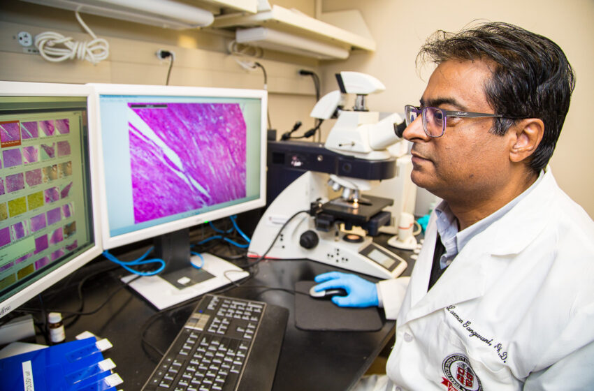 TTUHSC Study Unveils Potential Treatment for Spinal Muscular Atrophy