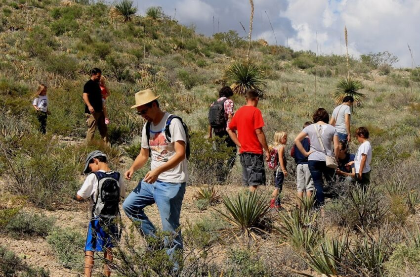 Schedule of events announced for Chihuahuan Desert Fiesta