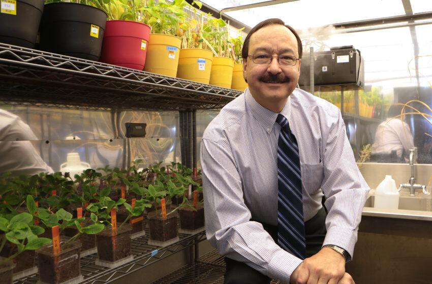 UTEP Professor Receives Prestigious Hispanic Education Award