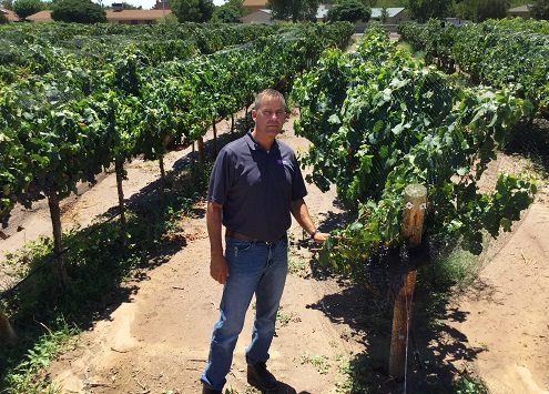 Experienced Winemaker Named new Viticulturist at NMSU