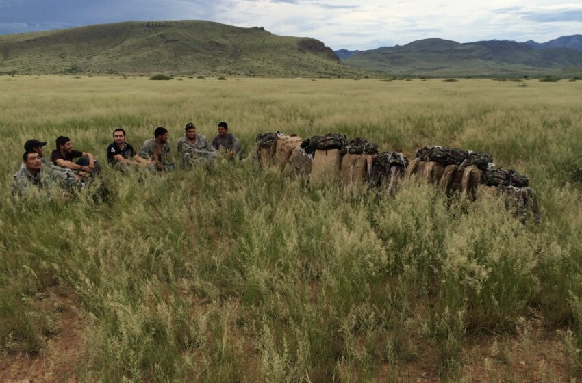 Half-ton of pot snagged by Border Patrol Agents near NM/AZ border