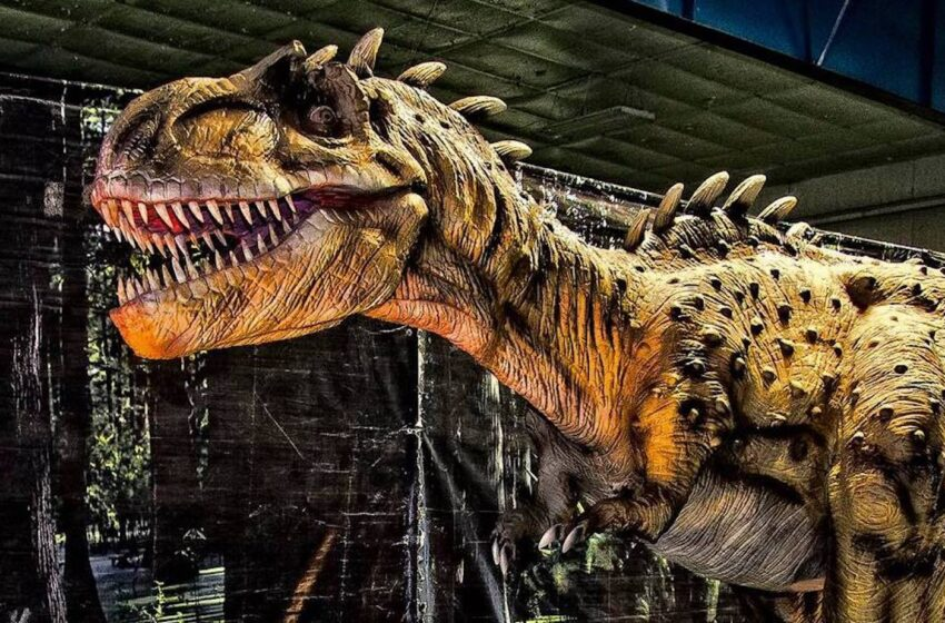 Jurassic Tour Brings Dinosaurs to El Paso County Coliseum
