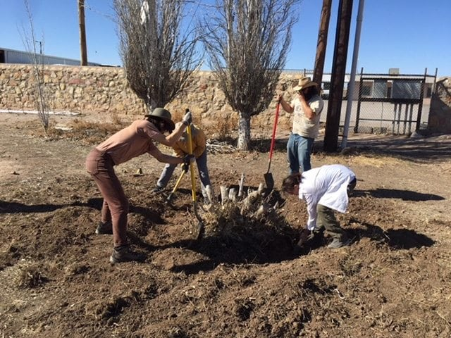 Building a Movement: Local Eco Designers to Host Event on Permaculture, Sustainability