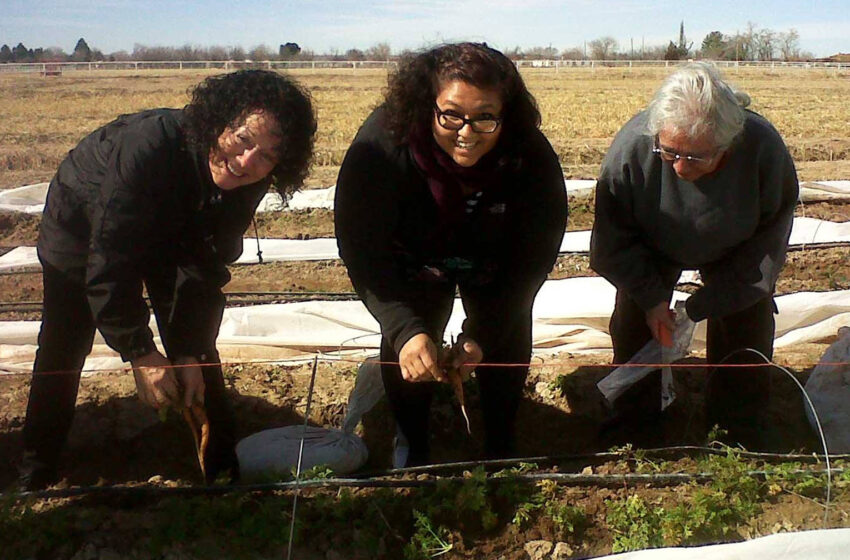 NMSU's Partnership with La Semilla Project Earns National Recognition