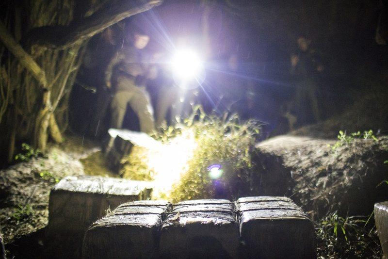 Legalizing Marijuana Might Have Negligible Impact on Border Security