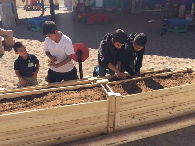 Gallery+Story: Kids, Vegetable Gardens Growing at Local Day Cares