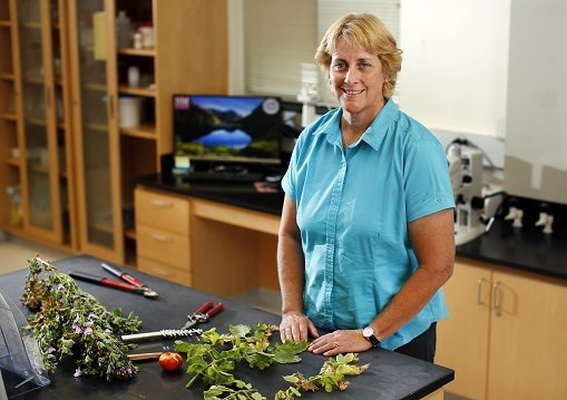 Natalie Goldberg First Woman to Lead NMSU Agricultural Experiment Station