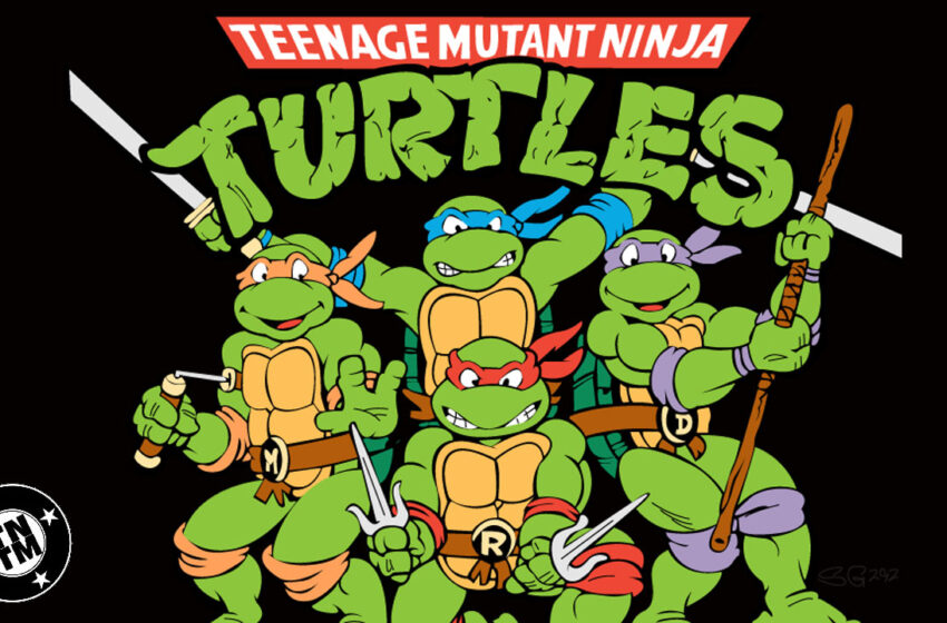 TNTM: Top 5 Ninja Turtles characters