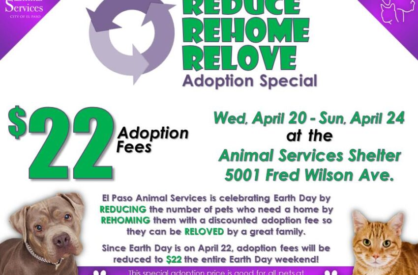 "Animal Services celebrates Earth Day with ""Reduce, Rehome, Relove"" adoption special"
