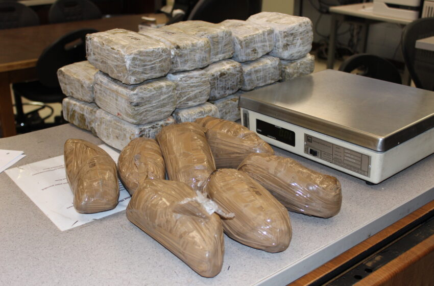 Border Patrol snags $250k of meth, $20k pot left at border fence
