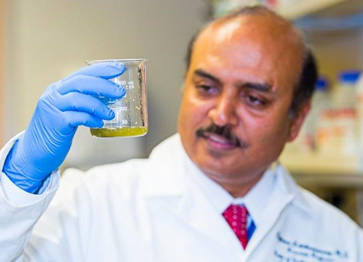 Plant Extract Shows Promise in Treating Pancreatic Cancer