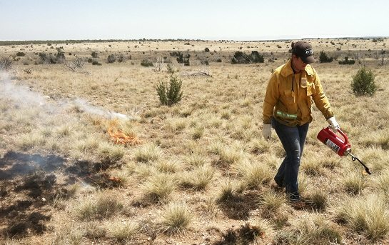 NMSU Cooperative Extension Trains Landowners Proper Prescribed Burn Techniques
