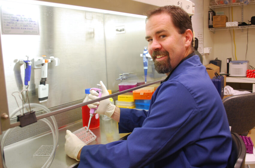 NMSU cancer researchers collaborate for a cure