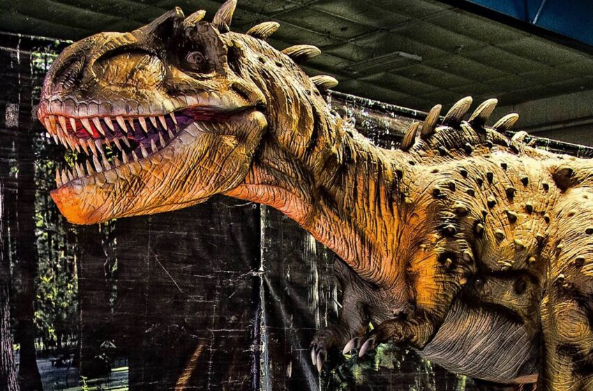 Dinosaurs in El Paso: T-Rex Planet Takes Over County Coliseum
