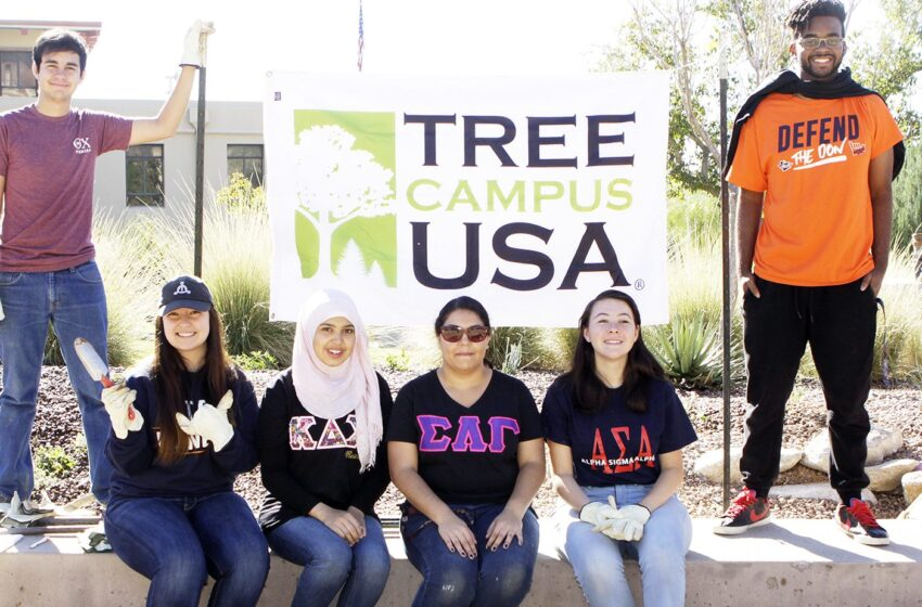 UTEP Recognized as Tree Campus USA by Arbor Day Foundation