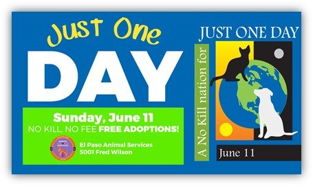 "Animal Services fees waived as Part of ""Just One Day"" Campaign"