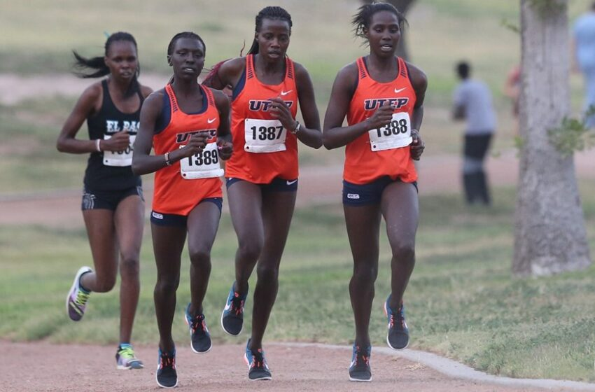 UTEP Cross Country Set to Travel for Kachina Classic