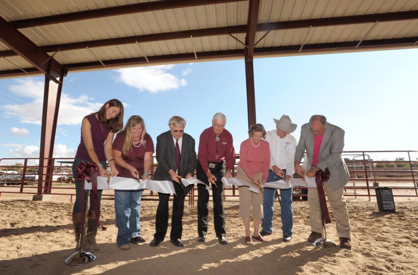 New covered arena benefits therapeutic riding program at NMSU