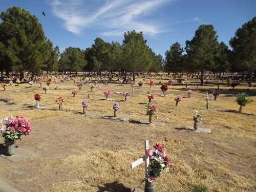Cemetery offering free burials of cremated remains Nov 2nd