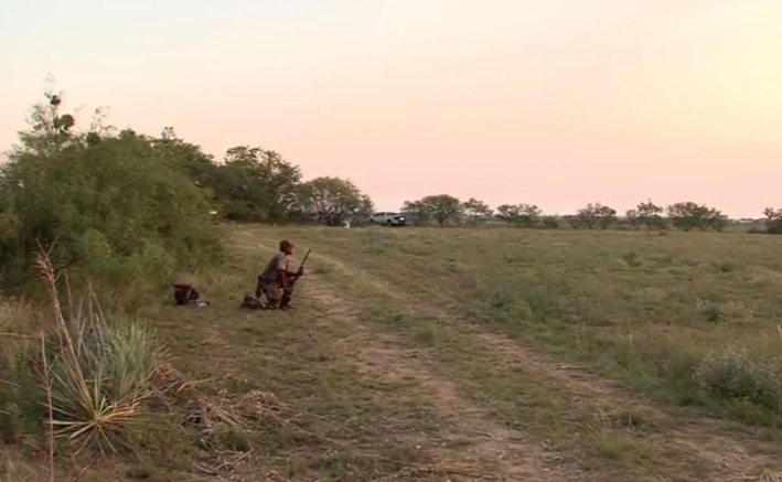 Video+Story: Texas Dove Hunting Season Outlook Promising