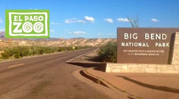 El Paso Zoo, Big Bend National Park Partner for Wildlife Conservation