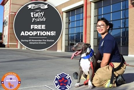 Animal Services, EPFD Team Up: Free Pet Adoptions at Neighborhood Fire Stations