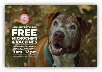 Animal Services Hosts Free Microchip, Vaccine Clinic in Far East El Paso Sunday