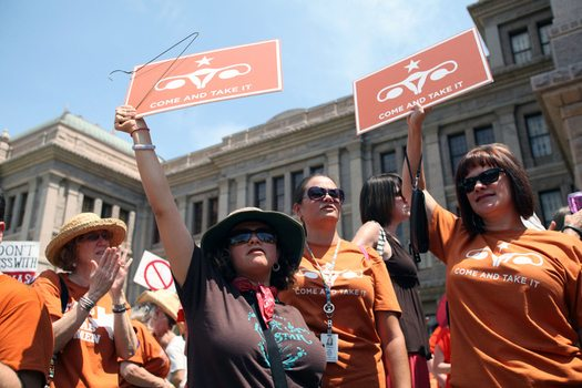Texas Coalition Aims to Turn Protesters into Political Movement