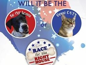 "Animal Services hosts ""Race for the Right House"""