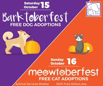 "Animal Services Hosts ""Barktoberfest"" and ""Meowtoberfest"" Event"