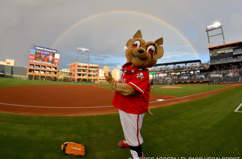 Gallery+Story: Chihuahuas Double Up Isotopes 4-2