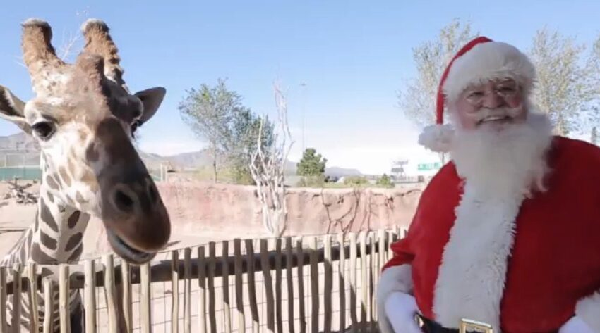 Santa Claus headed to the El Paso Zoo this weekend