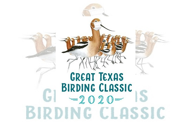 Great Texas Birding Classic moves to Fall for first time