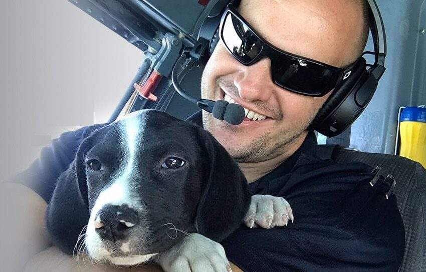 "Animal Services Pets to Take First-Ever ""Rescue Flight"""
