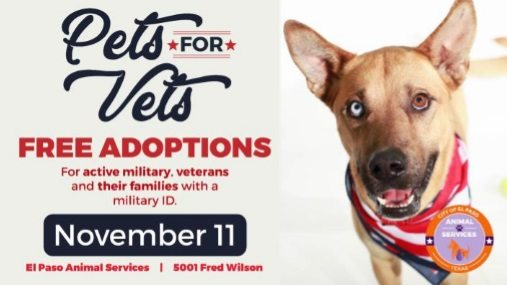 Free Pet Adoptions Saturday for Veterans, Active Military, and Their Families