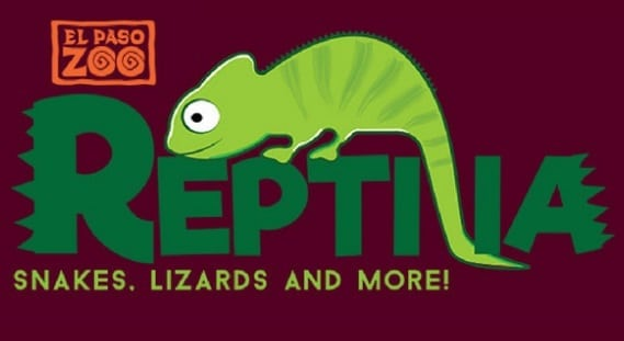 El Paso Zoo to Host Reptilia Weekend