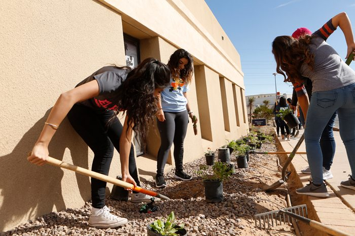 UTEP's 'Greeks' Go Green for Texas Arbor Day