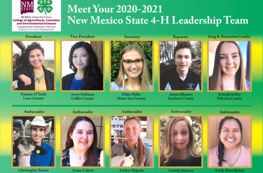 NM's new state 4-H leadership team ready for challenges