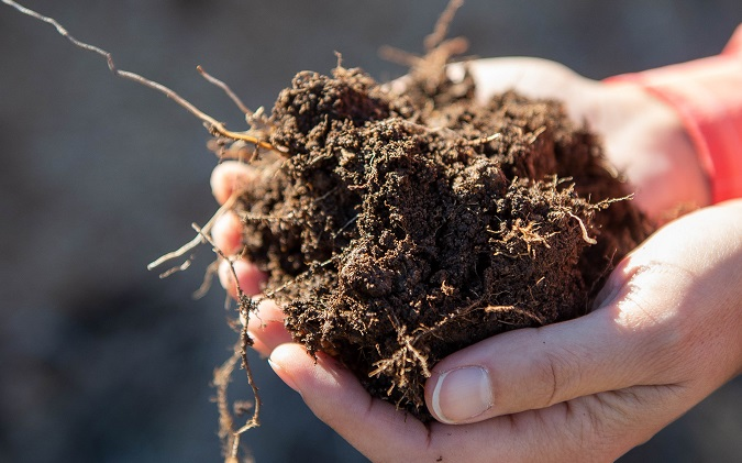 NMSU to host two-day soil health workshop online